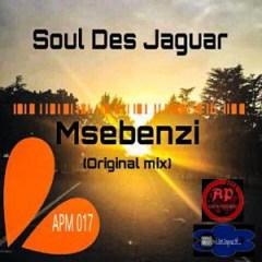 Soul Des Jaguar - Msebenzi  (Original Mix)